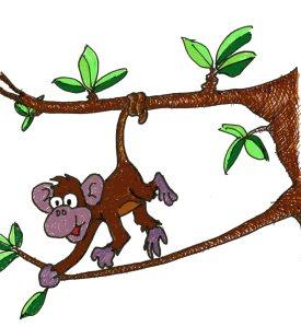 monkey-playing001