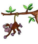 monkey-tail002